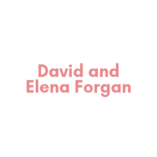 RS19 sponsor – David and Elena Forgan